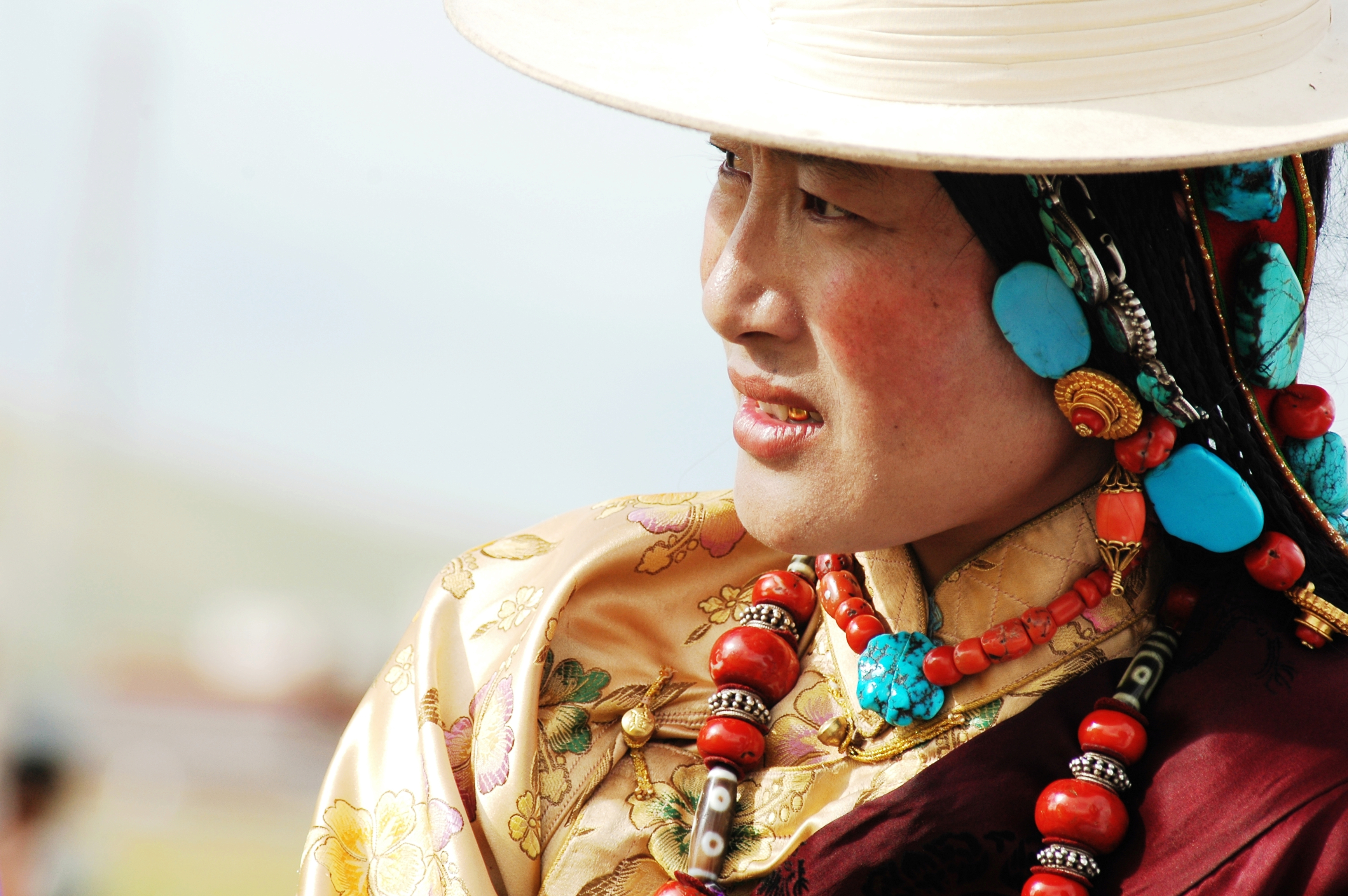 guest post the politics of tibetan plateau redness the new inquiry