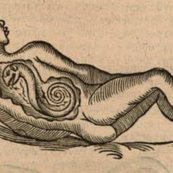 Woodcut from Les oeuvres d'Ambroise Paré showing a woman with a snake-like creature inside her.